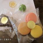 [記食] 七見櫻堂  手工巧克力與macaron