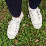 [購物] 日韓熱門款:歐洲斯洛伐克手工製帆布鞋 Novesta