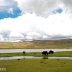 [記旅] 2016藏域秘境西藏之旅:此湖只應天上有  神湖納木措
