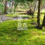 [記旅] 世界最難參拜之一:冬遊京都 西芳寺(苔寺)